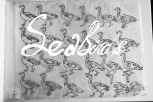 bar-head-goose-walk-frame-by-frame-bg-img1-sea-birds-animation-digital-poster-elephant-room-studio