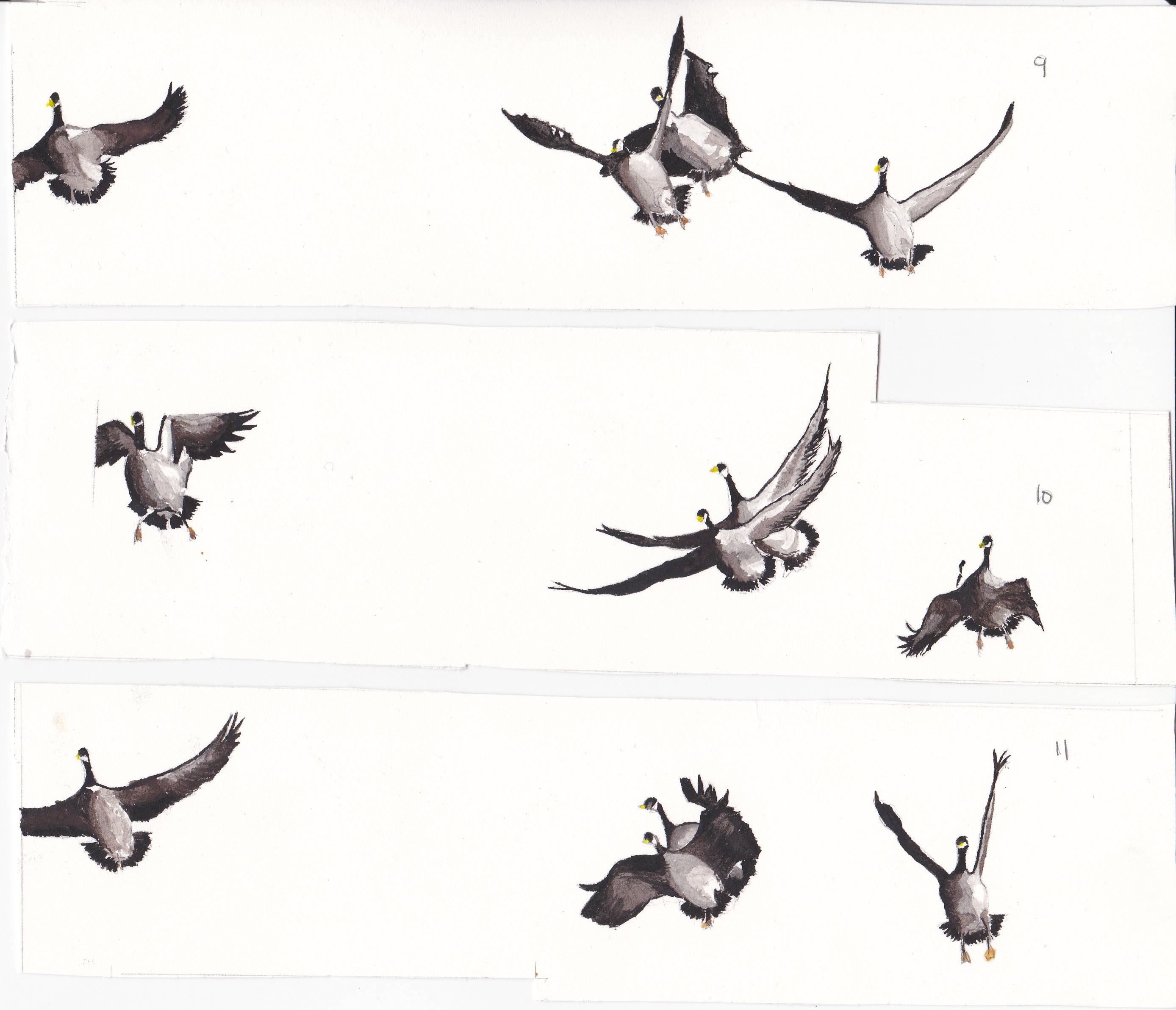 Elephant-Room-Studio-hunting-by-Emily-Liu-frame-by-frame-animation ...