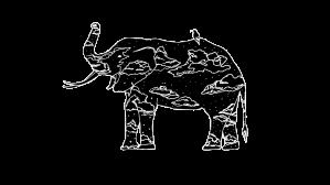 elephant-room-studio-logo-blk