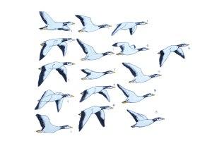 bar headed goose-watercolor